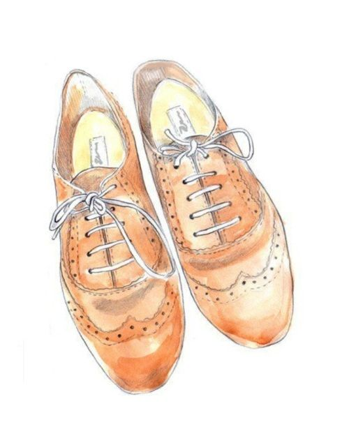 oxfords. line drawing with a little color