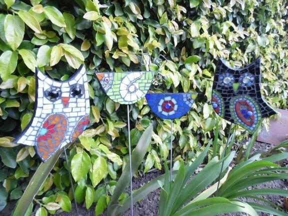 Tutores Para Plantas Mosaiquismo Pinterest Cactus