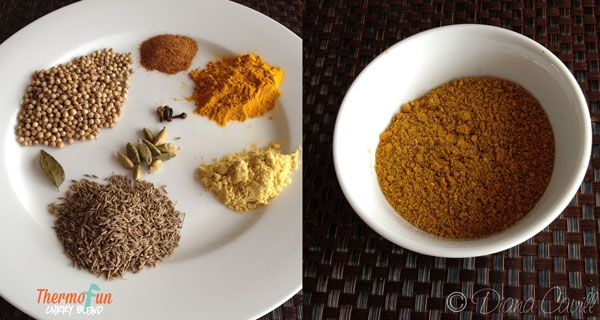 ThermoFun – Curry Blend Recipe