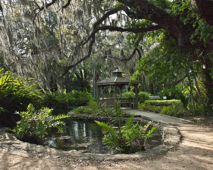17 Best Images About Trails Trees Treasures Palm Coast Flagler Beach Florida On Pinterest