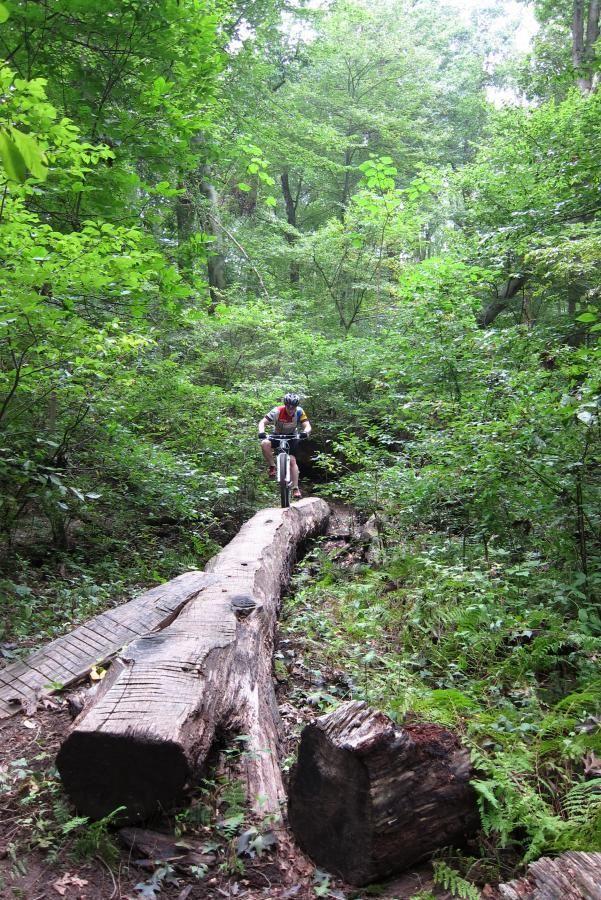 Middle Run Natural Area Mountain Bike Trail in Newark, Delaware || SINGLETRACKS.COM