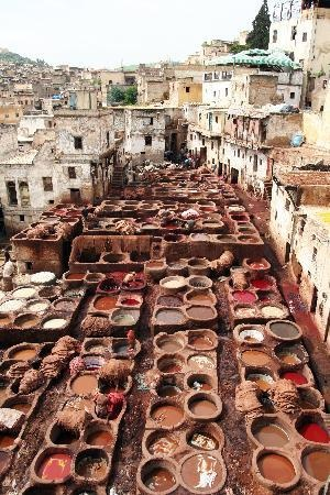 Fes tanneries Morrocco