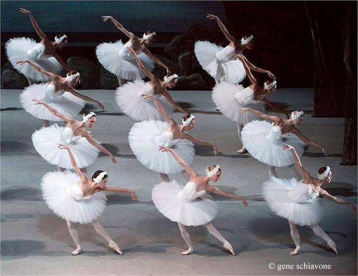 Synchronised movement, beautiful.