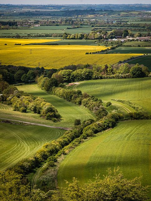 Spent many a day here as a child! - Dunstable Downs (NT) Bedfordshire, England