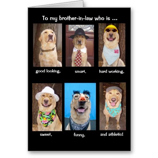 Funny Brotherinlaw Birthday Card Brothers in law, In
