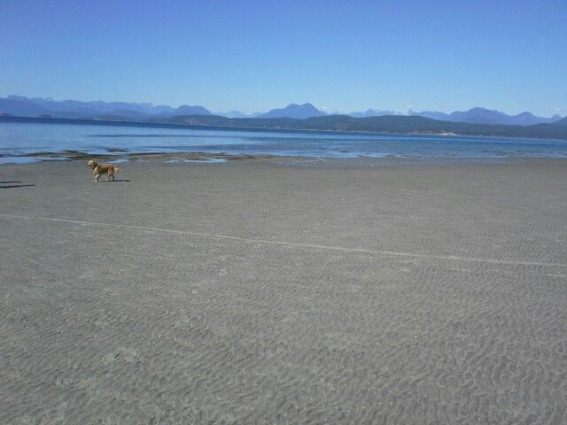 Indian Point Savary Island bc . Lots of room to play