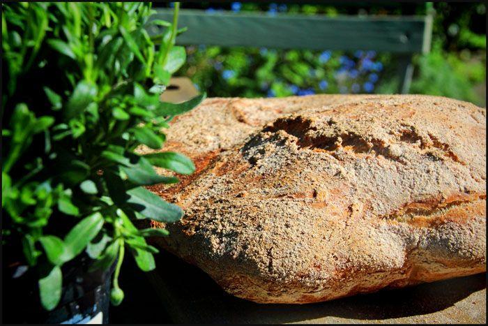 En opskrift på italiensk surdejsbrød, francescone.