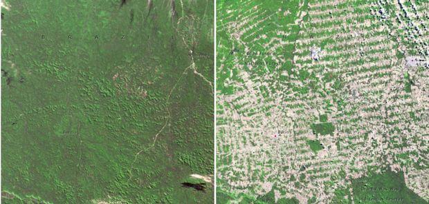 Lesy v Brazílii v júni 1975 vs. v auguste 2009. (Foto:NASA)