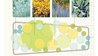6 planting plans for beds and borders