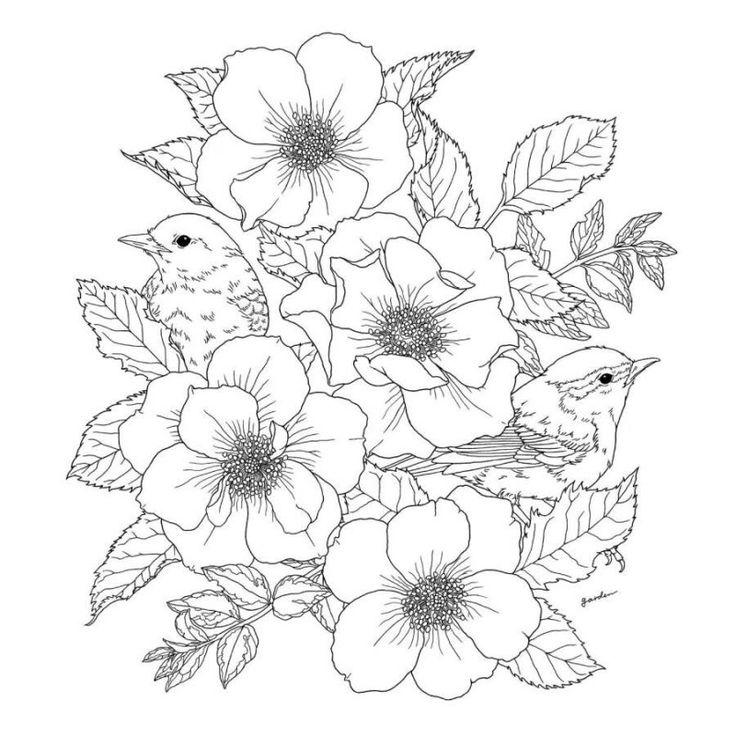 96pages Цветы и птицы рай Книжкараскраска снять стресс