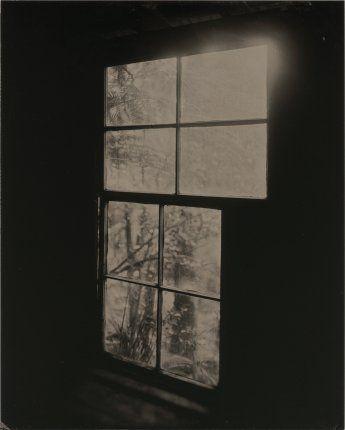 ben cauchi the window