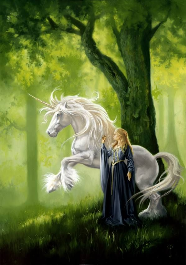 Unicorn Fantasy Myth Mythical Mystical Legend Licorne Enchantment Einhorn unicorno unicornio Единорог jednorožec Eenhoorn yksisarvinen jednorożca unicórnio Egyszarvú Kirin