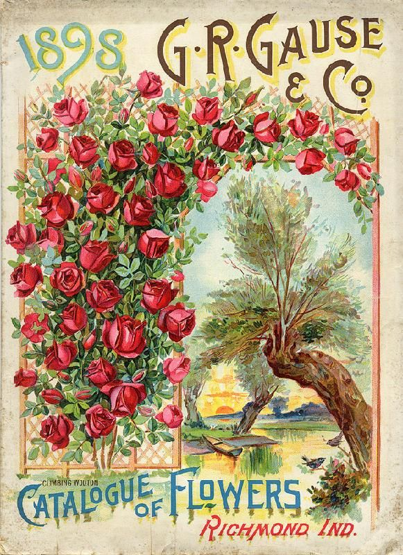 17 Best 1000 images about Vintage Seed Catalog Covers on Pinterest
