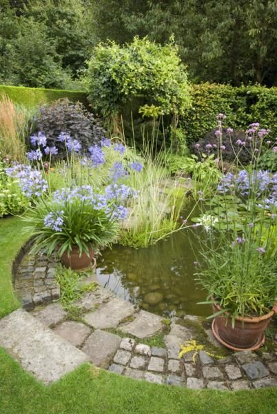 Pond with sloping access for creatures yet structured to look good in town or country style garden. Wish our pond looked this nice.