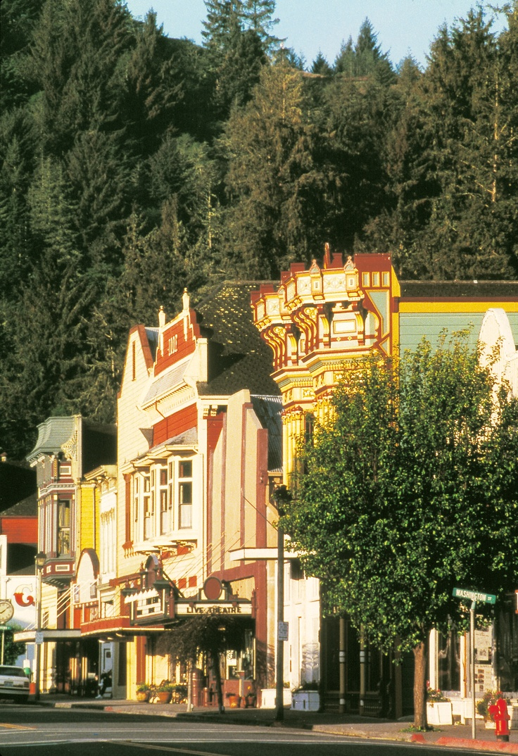 """Pinner says: """"This is main street of Ferndale, CA it is a must see!!! Time has stopped here."""""""