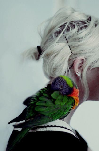 hair (and bird)
