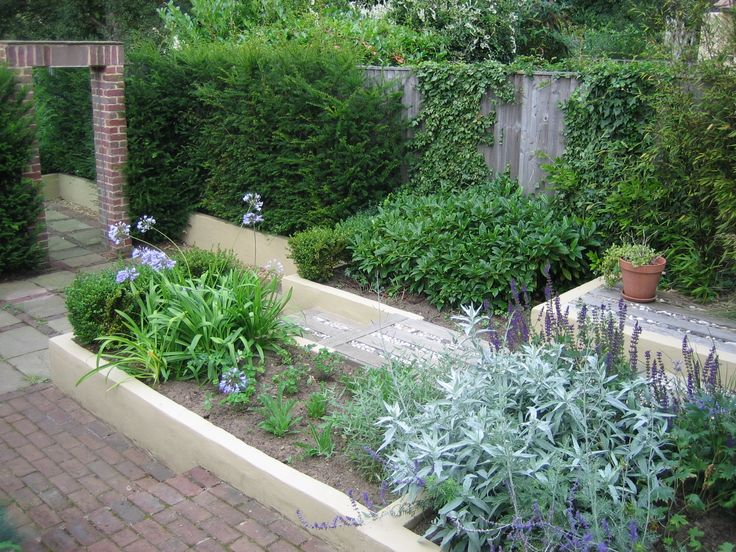 Most of the Buxus was moved to create more space in the lower bed and to reduce its dominance in the garden.