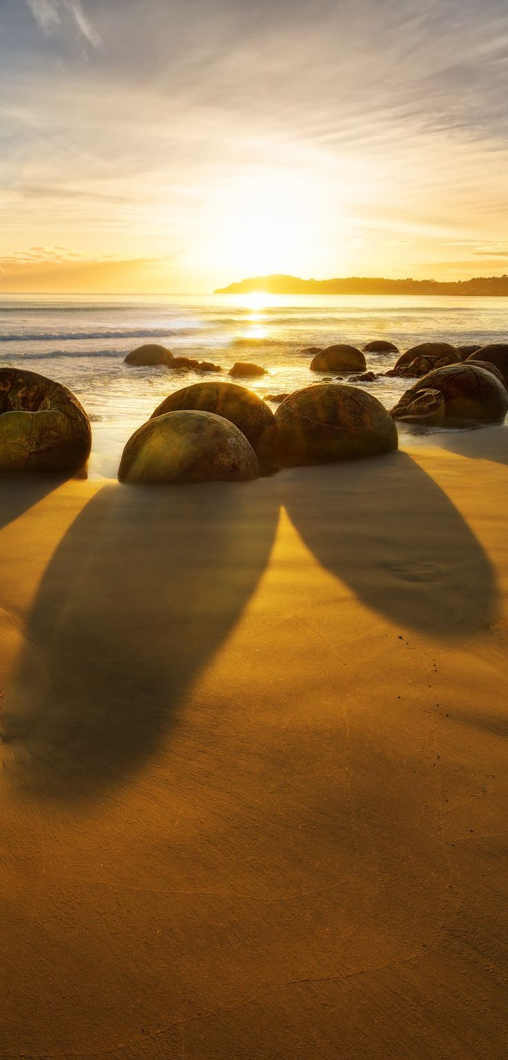 Famous Moeraki Boulders  at sunrise - Otago, East Coast of South Island, New Zealand