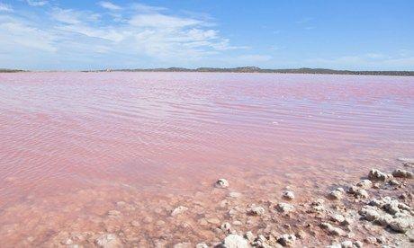 Pink Lake, Western Australia (Shutterstock) - Wanderlust