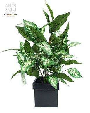 Pianta artificiale Dieffenbachia Variegata media