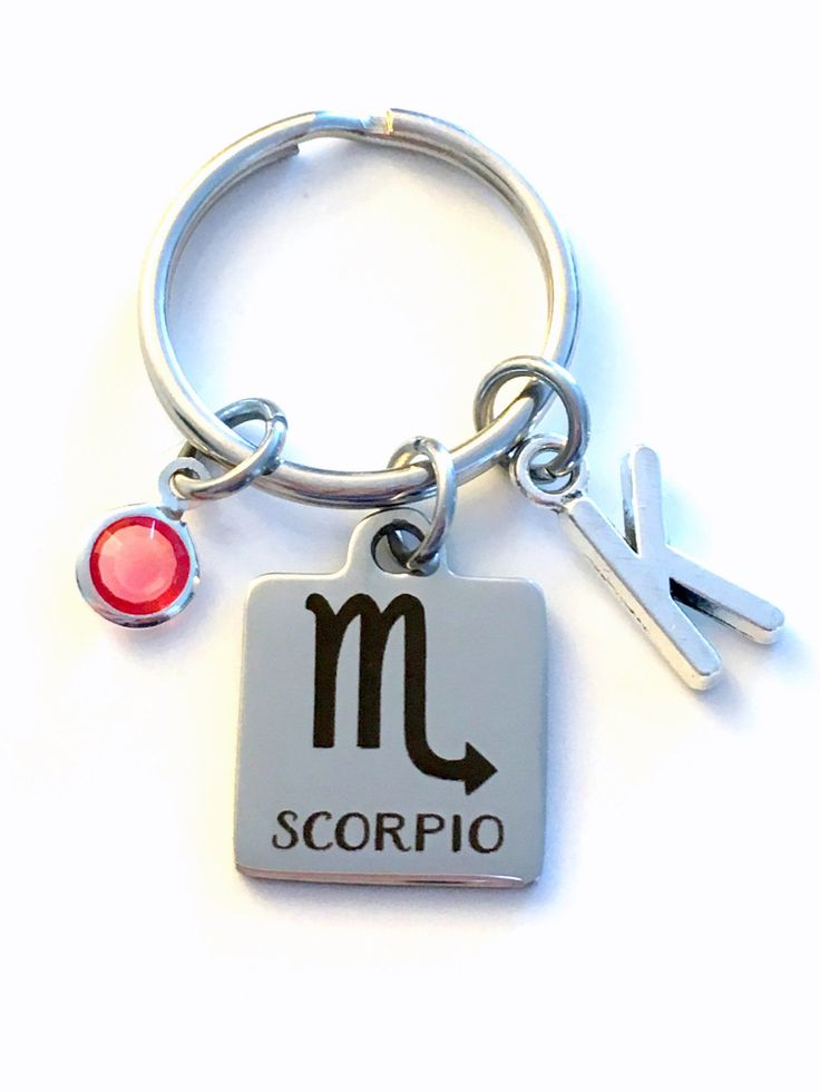 Scorpio KeyChain, Zodiac Sign Key Chain, Gift for Birthday Present Keyring Birthstone Initial Personalized Custom Letter October November by aJoyfulSurprise on Etsy