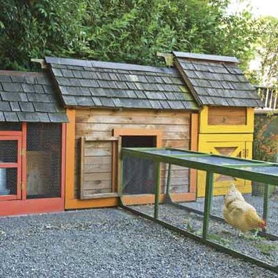 A bottomless, portable chute allows chickens to graze different parts of the yard and return to the coop at night. | Photo: Mike Jensen | thisoldhouse.com |