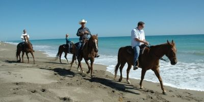 Horseback Riding on the Beach in Fort Pierce, florida. Ride your own horse.
