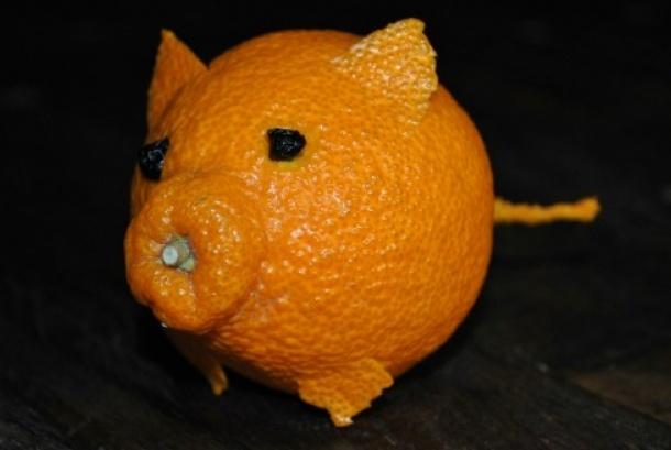 Sumo Tangerine posing as a pig.