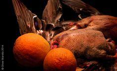 Canard colvert à l'orange façon Pierre Gagnaire / ♥♥♥♥♥ / Niveau de difficulté : 4.5/5. - Une recette à lire ici : http://lecoeurauventre.com/canard-colvert-lorange-facon-pierre-gagnaire