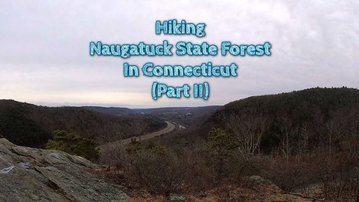Naugatuck State Forest in Connecticut is an excellent place to get out in nature and take a stroll. #hiking #camping #outdoors #nature #travel #backpacking #adventure #marmot #outdoor #mountains #photography