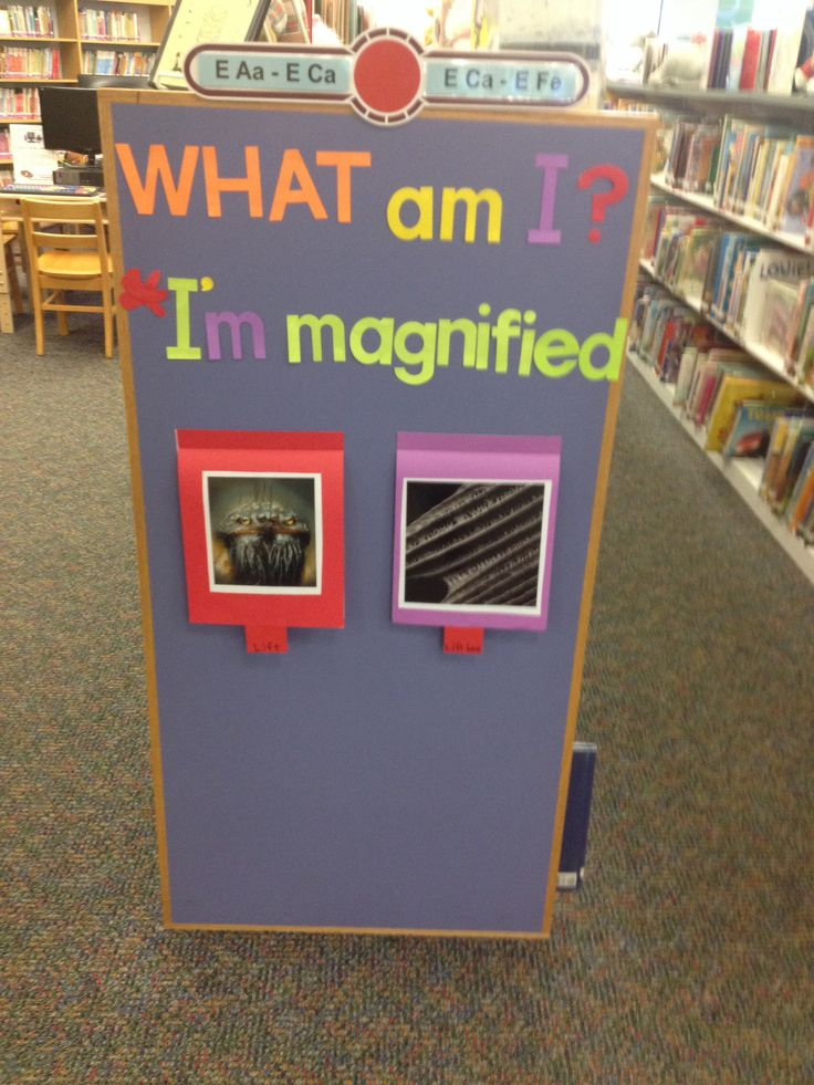 Muskingum County Library children's department end cap display.