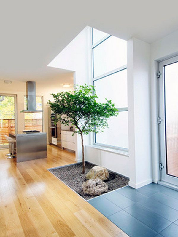 Very pretty entry, Interesting opaque glass front door. I Love the little garden and the stainless steel island. interior rumah minimalis tipe 36