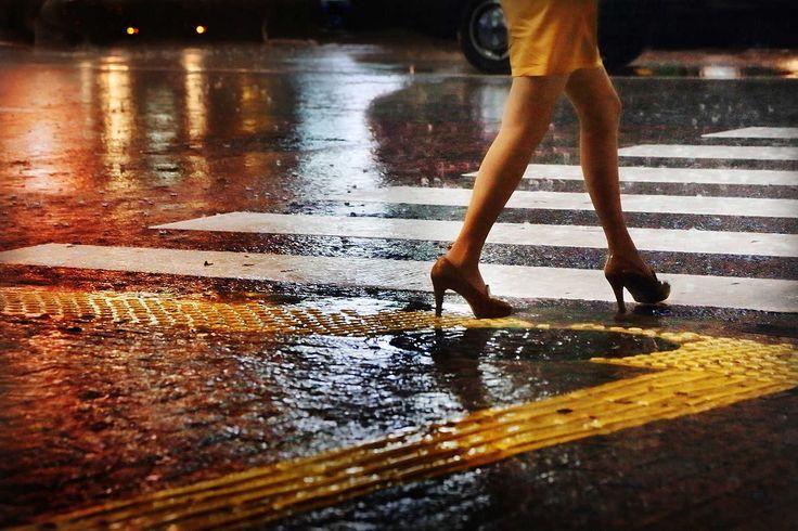 Legs on zebra - Christophe Jacrot - Schilderijen, fotografie, fotokunst online bij LUMAS