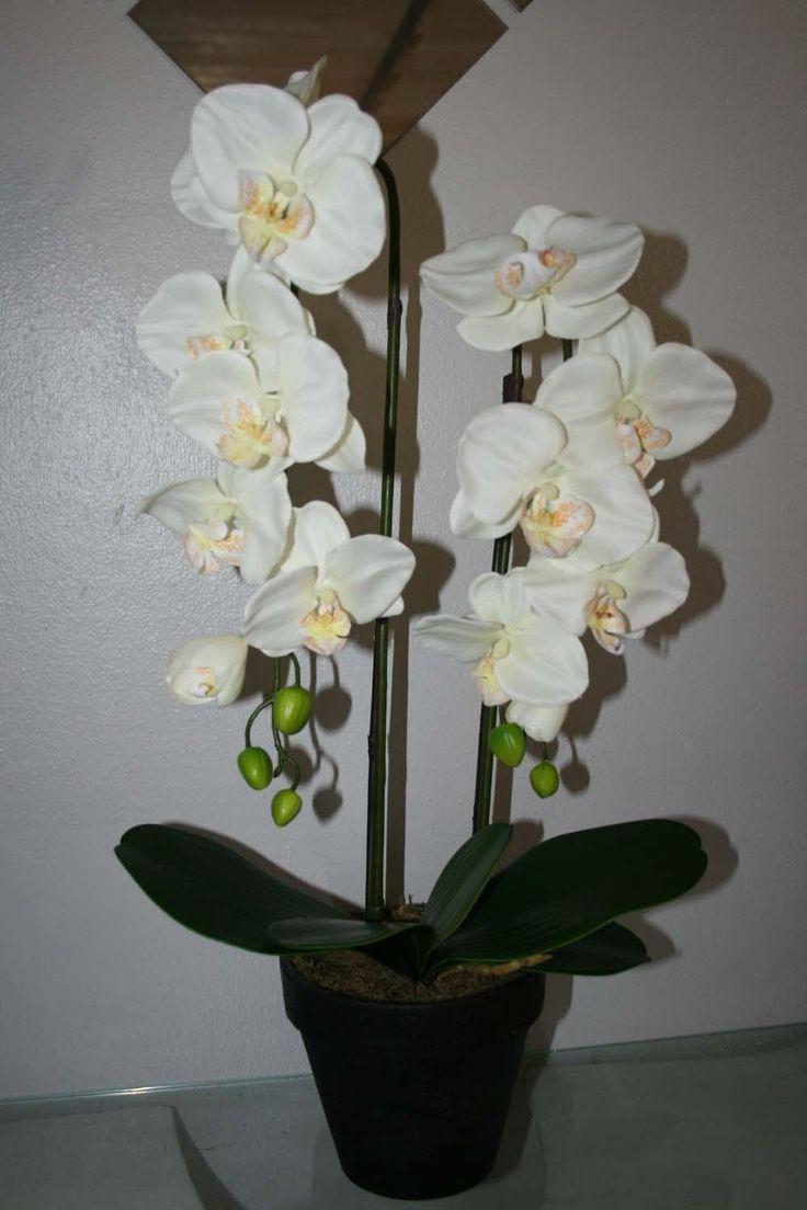 Orkide 66 cm. hvid 2 grene
