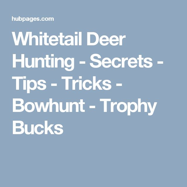 Whitetail Deer Hunting - Secrets - Tips - Tricks - Bowhunt - Trophy Bucks