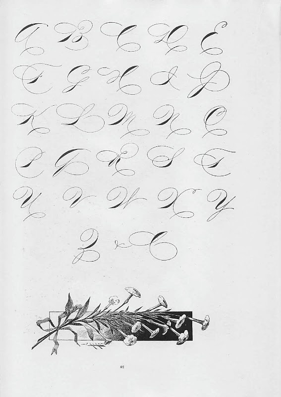 Best Calligraphy Images On   Letter Fonts Letters