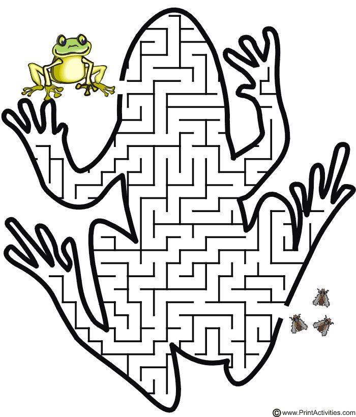 Frog shaped maze from PrintActivities.com