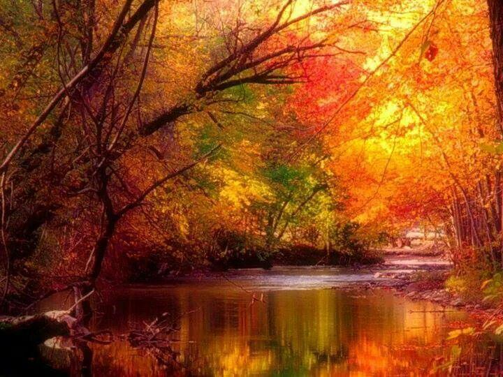 Bello otoño