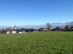 [Haute-Savoie] Excenevex Messery Chens Massongy Sciez Au départ D'Excenevex, on alterne routes et pistes agricoles pour rejoindre les bois de Messery, qu'on va traverser jusqu'à Chens.  Enfin on se dirige vers sur Massongy, puis Sciez pour revenir à Excenevex