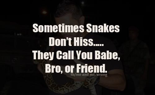 Sometimes Snakes Don't Hiss...they Call You Babe, Bro Or