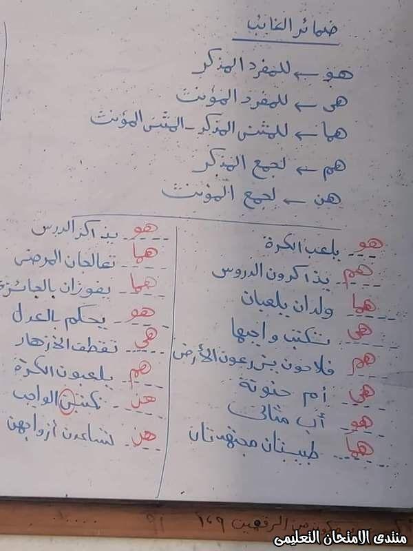 شرح ضمائر الغائب في اللغة العربية للصف الثالث الابتدائي ترم أول Bullet Journal Exam Journal