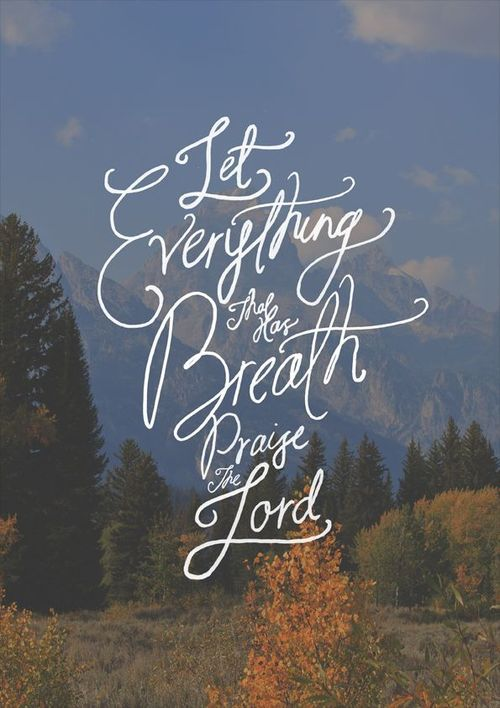 Psalm 150:6 Let everything that has breath, praise the Lord #scripture