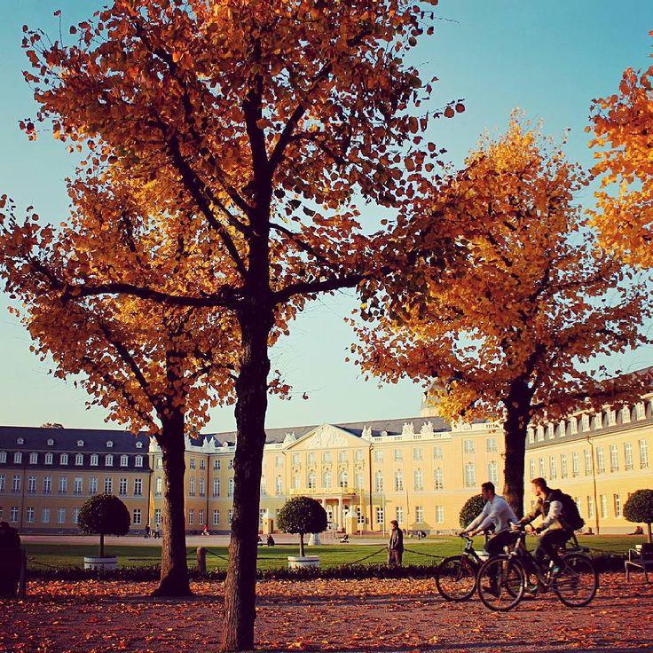 Auf dem #Fahrrad kann man den #Herbst und das schöne #Herbstwetter super genießen! Habt ihr schon mal eine #Fahrradtour durch den herbstlichen #Schlossgarten in #karlsruhe gemacht? #visitkarlsruhe #visitbawu #autumn #colorful #Schloss #schlosskarlsruhe #bike #visitgermany
