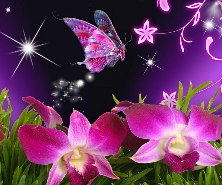 Un fluture din povesti