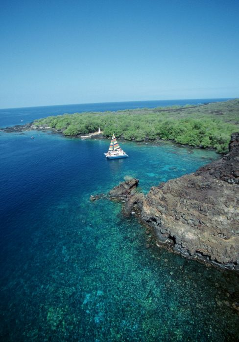 Kealakeakua Bay. The continental shelf drops a fair amount about 50 yards off the coastline, but this is by far one of the best snorkeling spots I've been to. We saw so many varieties of fish, not much by way of pretty coral, but our highlight? Dolphins! Live, playful dolphins.