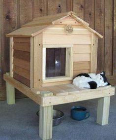 Winter Cat Care: Baby, It's Cold Outside! | ASPCA  Professional - Perhaps a little bulky for ya'lls patio, but still cute!