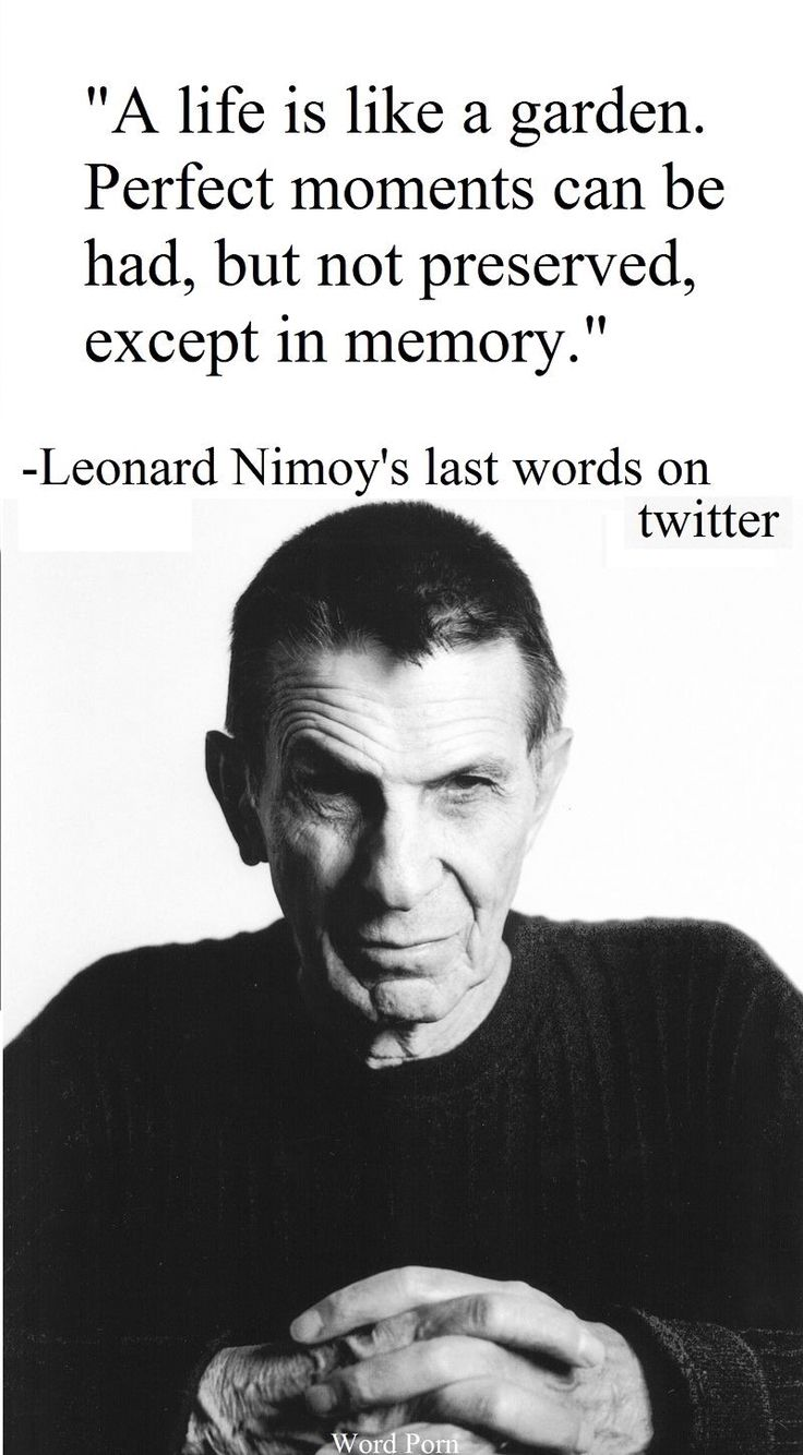 Leonard Nimoy Quotes 462 Best Truth Images On Pinterest  Quote True Words And Truths