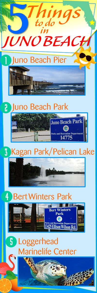 5 Things To Do In Juno Beach Florida! Juno Beach is a wonderful place to live, work, and play. 1.) Juno Beach Pier  2.) Juno Beach  3.) Kagan Park & Pelican Lake  4.) Bert Winters Park  5.) Loggerhead Marinelife Center, Inc.  Read more about the things to do in Juno Beach here: http://www.waterfront-properties.com/blog/5-things-to-do-in-juno-beach-florida.html #junobeach #junobeachfl #junobeachflorida #sofla #thingstodo #southfloridafun
