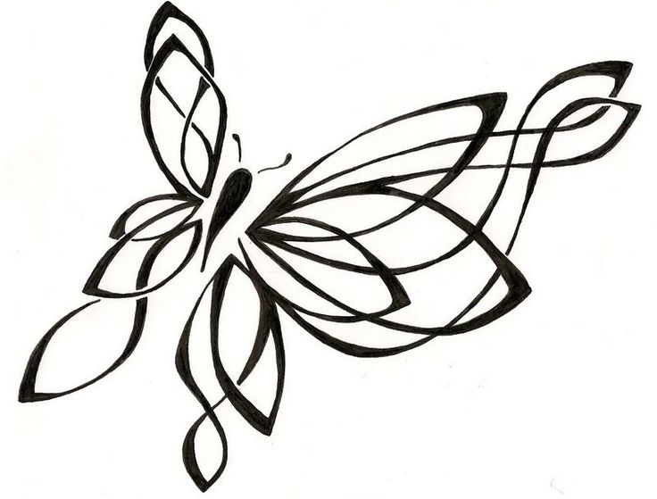 Line Drawing Butterfly Tattoo : Best images about butterfly drawing on pinterest