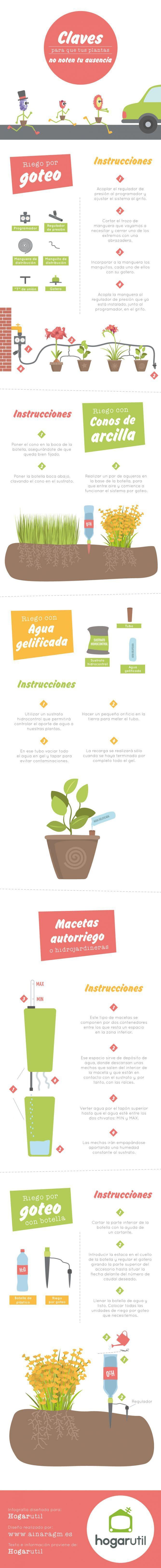 Infografía sobre cómo regar tus plantas en vacaciones #infografia #jardineria #plantas